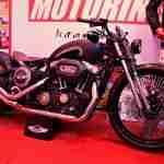 Rajputana Customs Harley 48 Auto Expo 2012 India 01