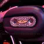 Rajputana Customs Harley 48 Auto Expo 2012 India 02