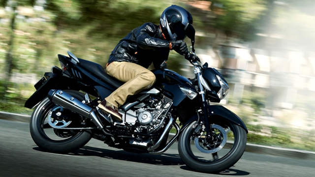 Suzuki Inazuma 250 price