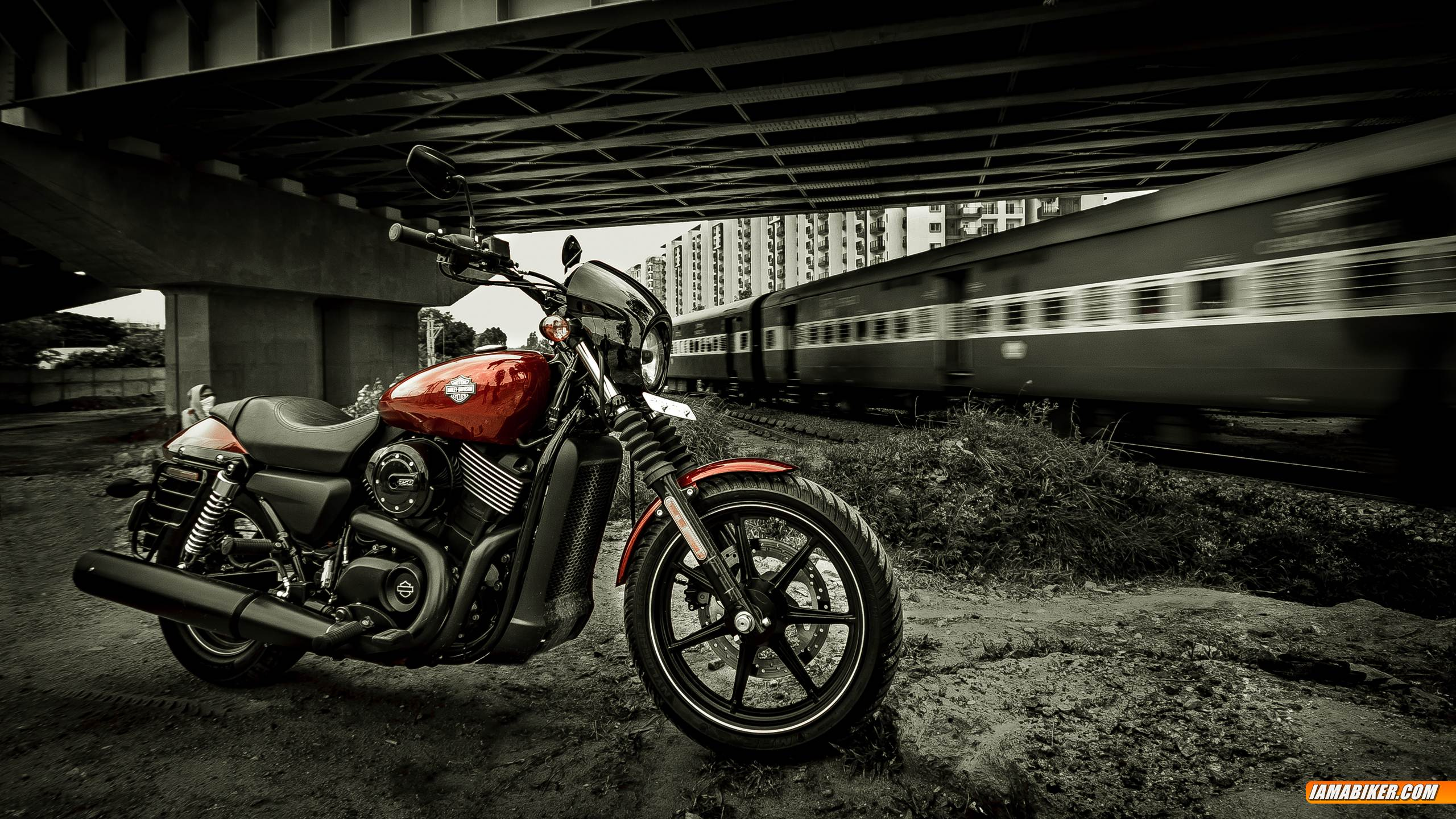 harley davidson street 750 - photo #32