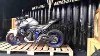 Yamaha MT 25 side view