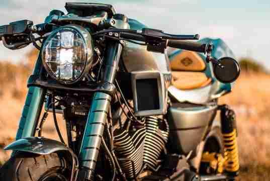 Harley King of Kings Mexico Queretaro Apex Predator