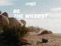 Ducati Scrambler Teaser